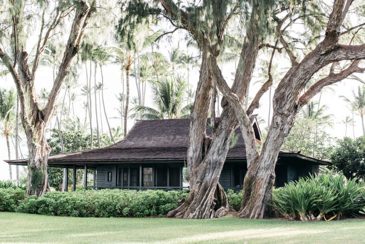 The main house, called the Beach Cottage, is shaded by three monkeypod trees (also called raintrees), iconic in the Hawaiian islands.