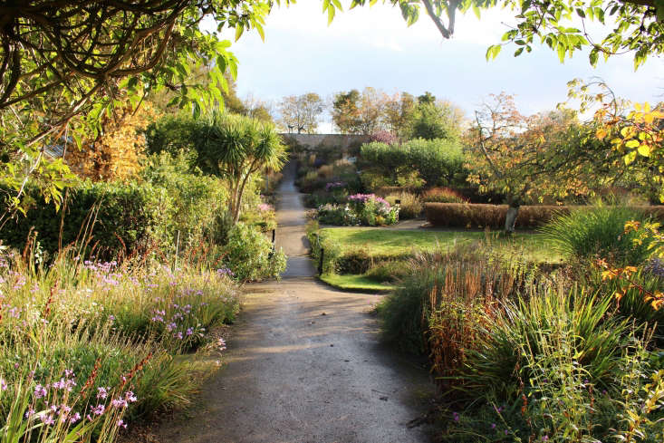 At the Cambo Estate&#8\2\17;s walled garden, in late October the plantings benefit from a gentle slope, the moderating effect of the North Sea, and the added protection of enclosure. Photograph by Christin Geall.
