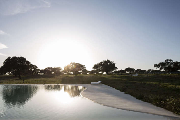 The modern pool is set in a field of wildflowers and abuts a grove of cork trees.