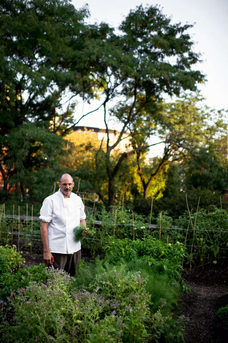 Executive Chef Wade Moises (formerly at Babbo, Lupa, and Eataly) and his wife tend the garden, making use of a small storage and planting area off to one side, behind a trellis wall.