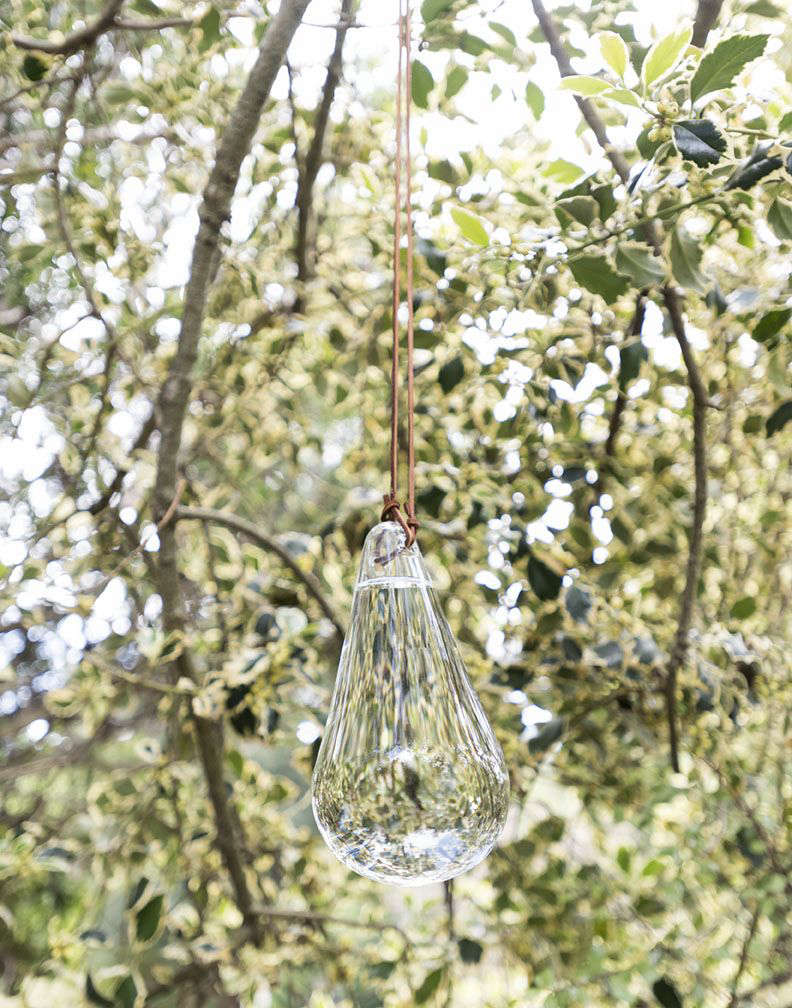 Hanging from a leather rope, an Anti-Fly Glass Sphere ($85) catches the light in a corner of my garden.