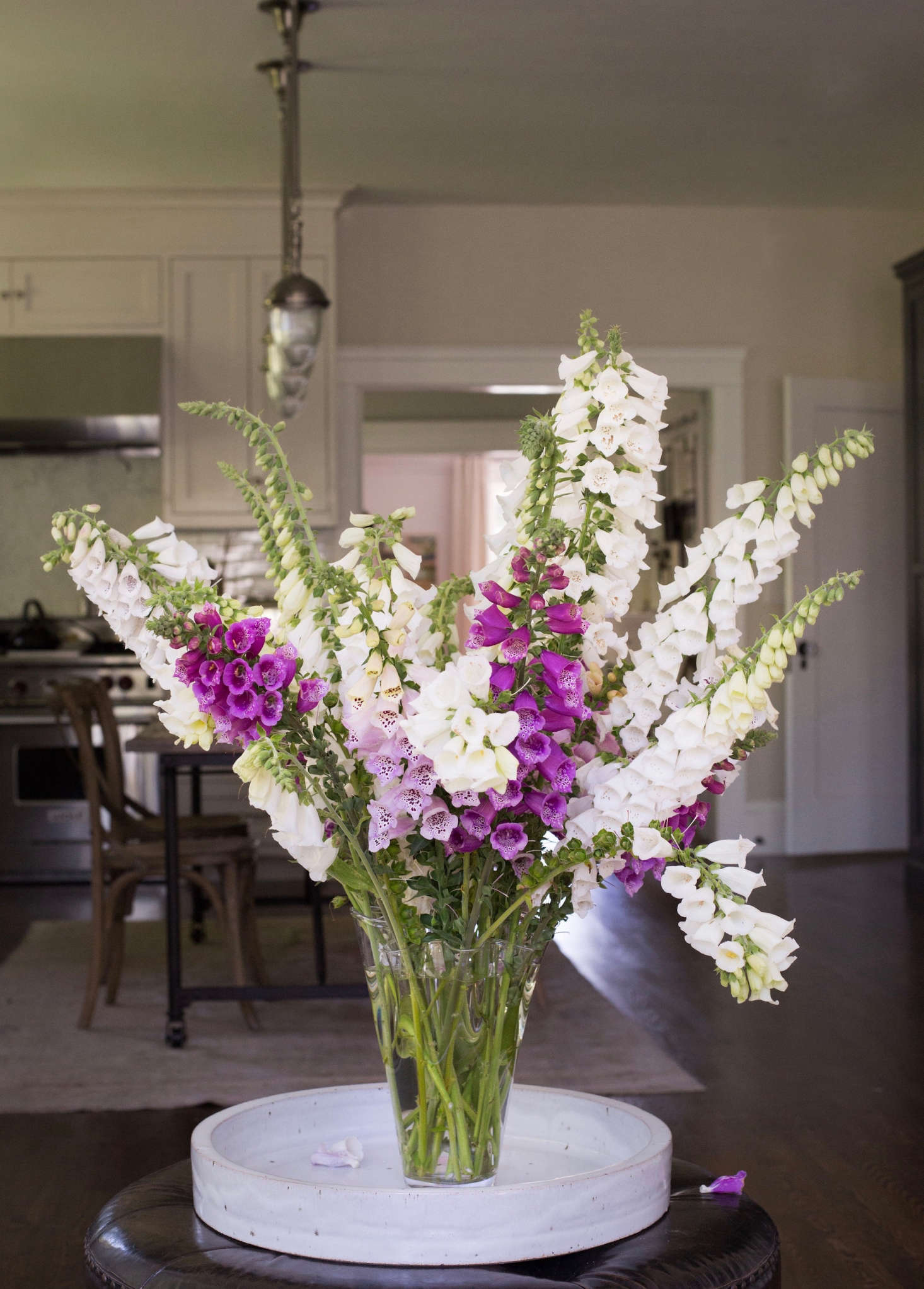 As cut flowers go, foxgloves are heavy drinkers. I&#8