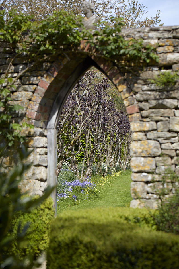 Leaving the formal areas of the garden through a Gothic gate, the Nut Walk presents another surprise with its fiery crimson leaves of Copper Beech under-planted with bluebells, cowslips, fritillaries and cuckoo flowers.