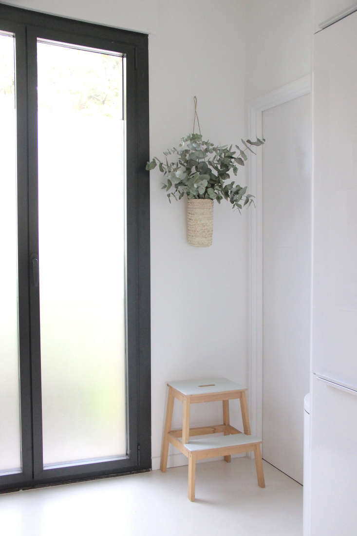 Eucalyptus is arranged in a wall-mounted straw vase in designer Ilaria Fatone&#8\2\17;s ground-floor apartment kitchen.Photograph byIlaria Fatone.
