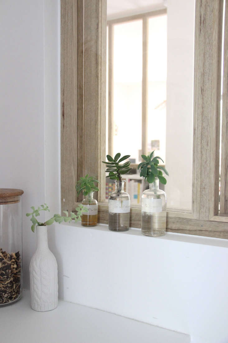 In designer Ilaria Fatone&#8\2\17;s wood-framed kitchen window are lab bottles where jade plants are growing roots.