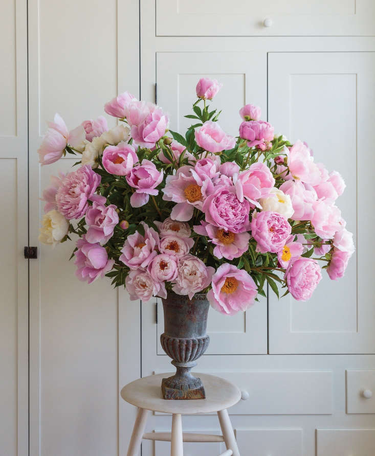 A collection of fragrant peonies joyfully explodes out the vase in this arrangement by Ariella Chezar. Consisting of only one type of flower, the arrangement proves you don&#8