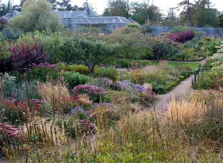 Head gardener Elliot Forsyth developed the naturalistic plantings at Cambo, including sweeps of grasses. Photograph by Sir Peter Erskine. For more, seeFlower Design: A Week at the Cambo Estate in Scotland.