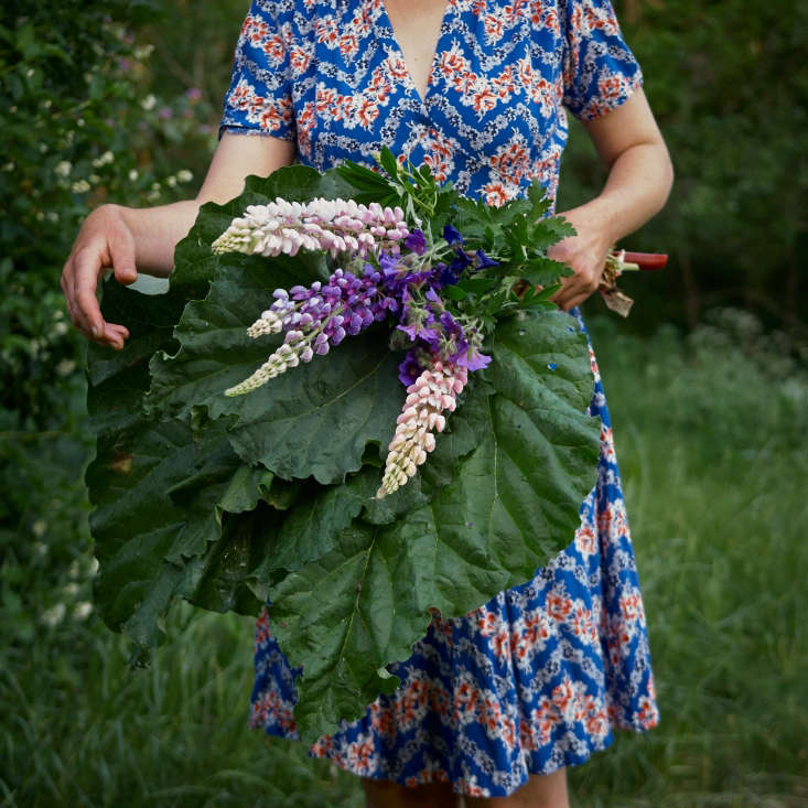 #onebouquetperday with blue geranium, lupine, and iris, plus ingredientsfor a rhubarb pie to sharewith neighbors.