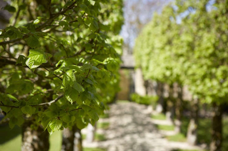 The circuitous walk returns to the formal gardens, but there is more.