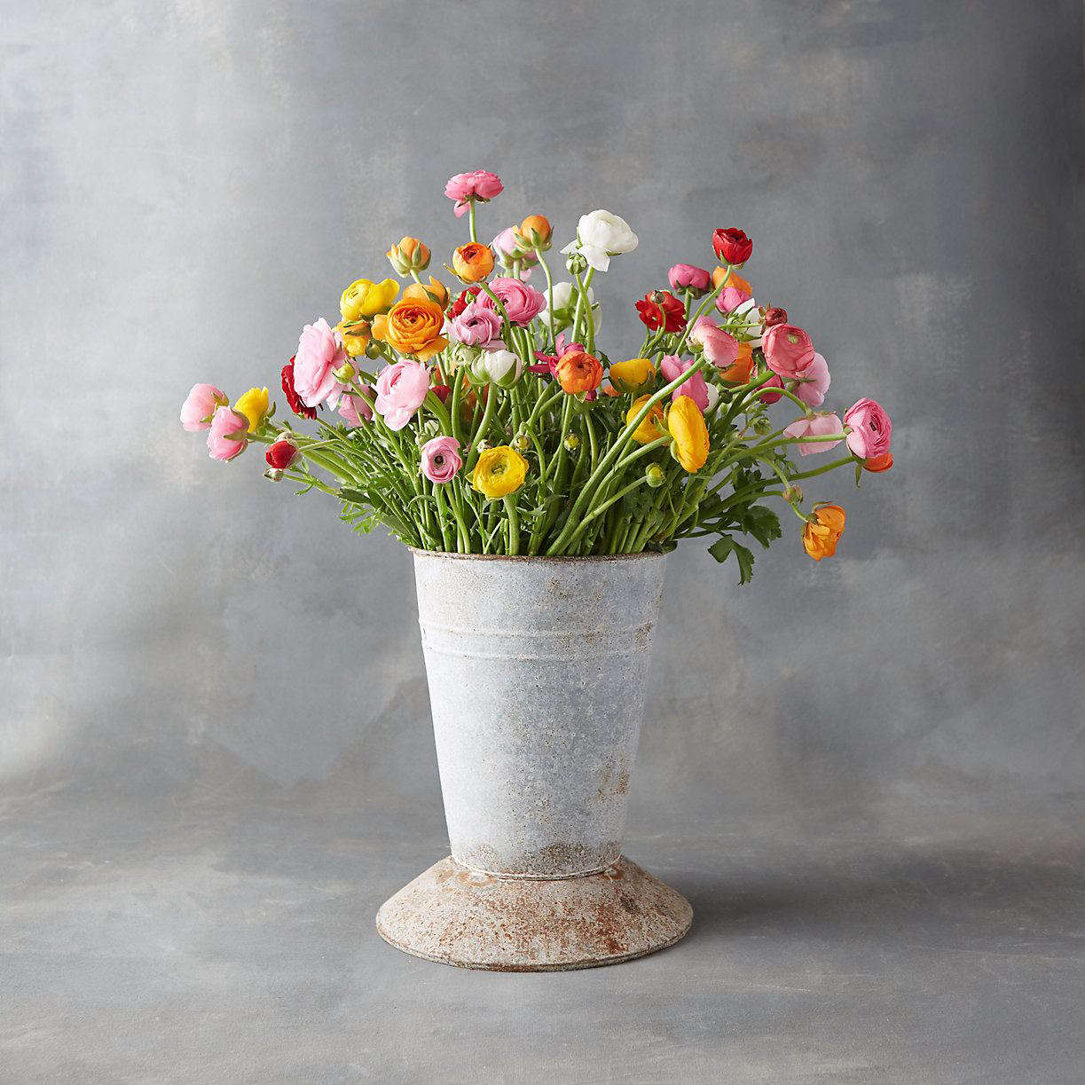 An 80-stem Fresh Ranunculus Bunch is $98 from Terrain. For Mother&#8