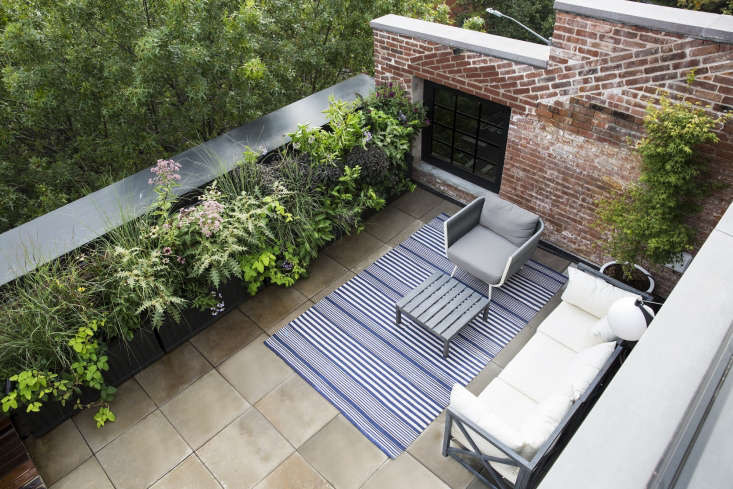 On athird-floor terrace, Thompsonfilled boxes with a variety of plants in a palette of plums and blacks, and brightened those darker colors with some acid greens. She squeezed a columnar Japanese maple into the tight space beside the couch.