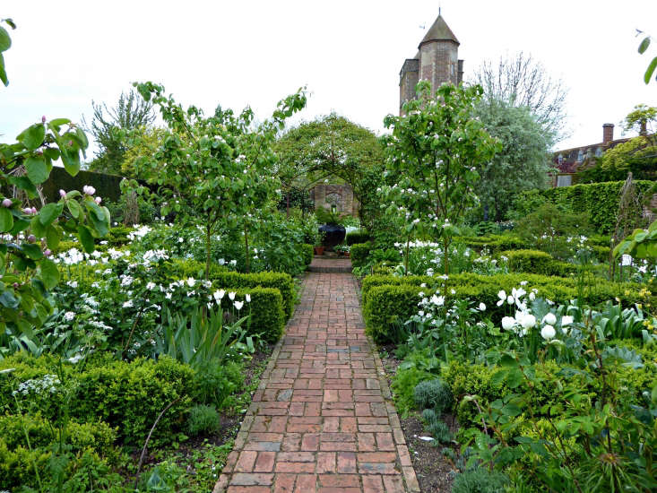 Quince trees edge the brick path in the white garden.