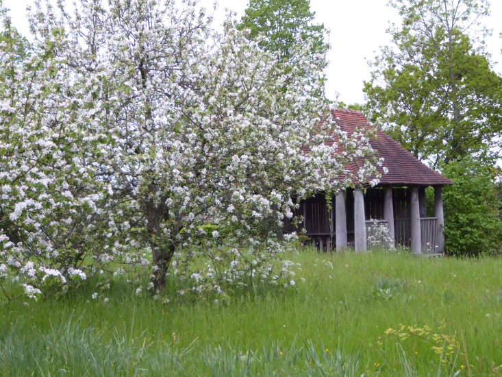 Apple trees in the orchard at Sissinghurst Castle. See more at Sleeping at Sissinghurst: An Overnight Stay at England's Most Famous Garden. Photograph by Clare Coulson.