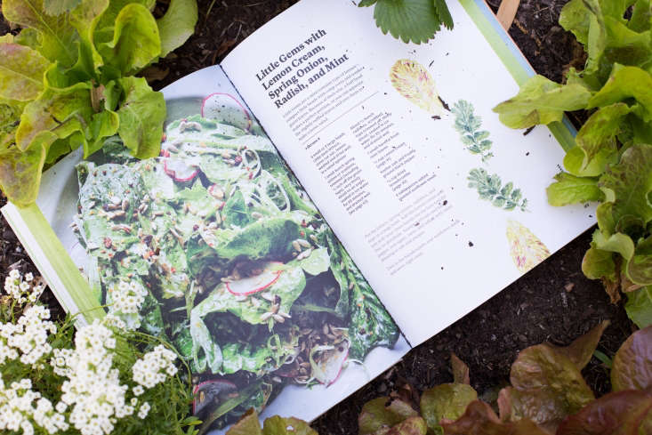 """The book has \2\25 vegetable-forward recipes, broken up into six distinct growing seasons (he has aptly divided summer into """"early,"""" """"mid,"""" and """"late"""")."""