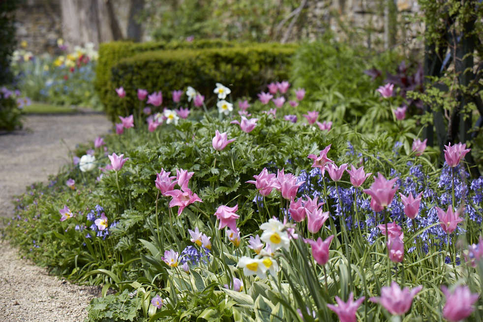 Is perfection achievable in a garden? Some would say not, but Wortley House in Gloucestershire comes very close to achieving it with its eclectic combination of spring bulbs flowering in the borders. See more of this garden at Garden Visit: A Modern Garden for a Gothic Estate in the Cotswolds. Photograph by Britt Willoughby Dyer.