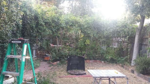 Meade House Garden Before