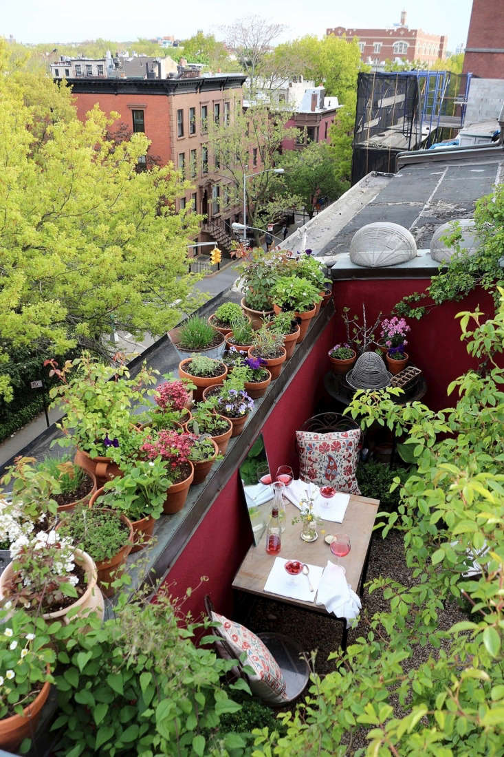 My first Brooklyn garden was on a very small terrace on the top floor of a Brooklyn townhouse in the Cobble Hill neighborhood. Its footprint was 66 square feet. The size became the name of the blog it inspired and then a book and has remained my calling card.