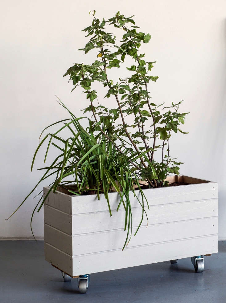 Who doesn&#8\2\17;t love a planteron wheels? Our rolling container garden is an easy DIY project you can make in under an hour (plus the time it takes for the paint to dry).