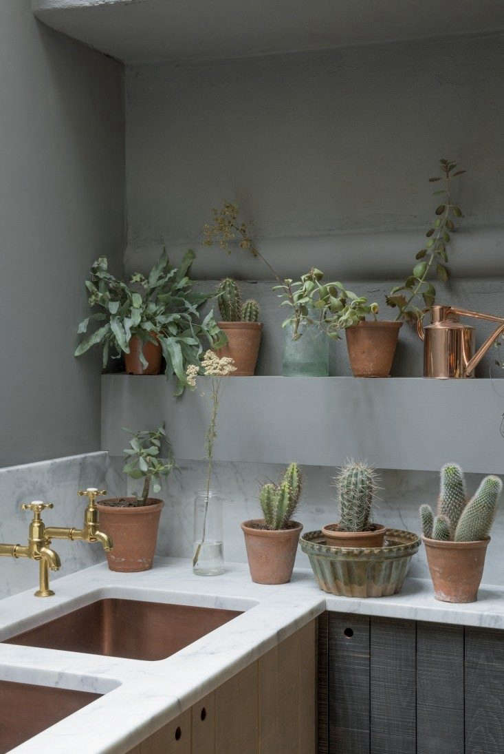 In this week&#8\2\17;s Kitchen of the Week post, houseplants steal the show. Photograph courtesy of deVol.
