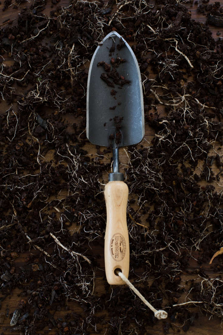 Handmade in Holland, a DeWit Dutch Trowelhas a sharp-edged Boron steel head and an ash handle. It is \$\2\2.64 at Home Depot.