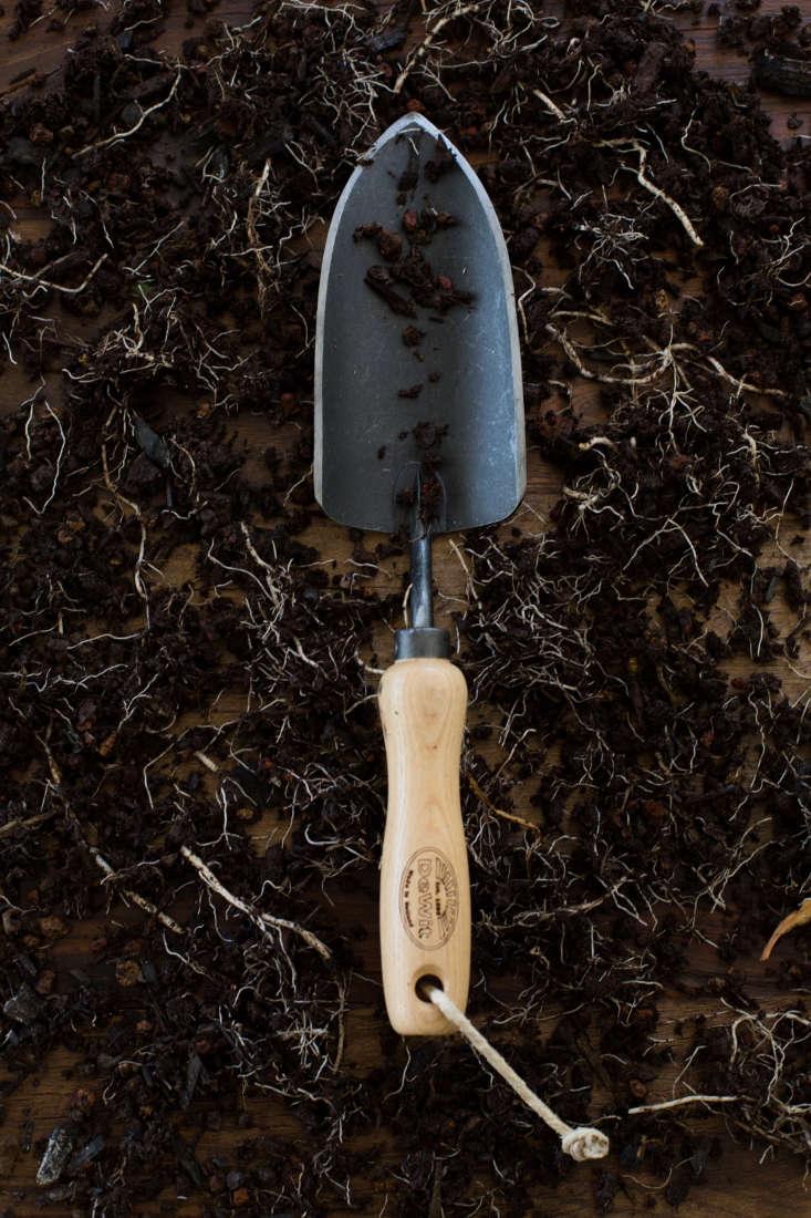 Handmade in Holland, a DeWit Dutch Trowelhas a sharp-edged Boron steel head and an ash handle. It is $
