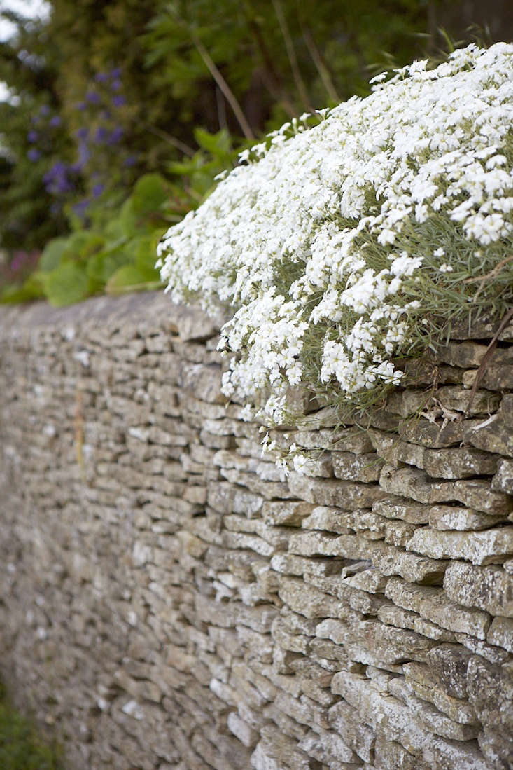 A dry stone wall, if it's built well in the first place, can last hundreds of years. But it does depend on the stone.