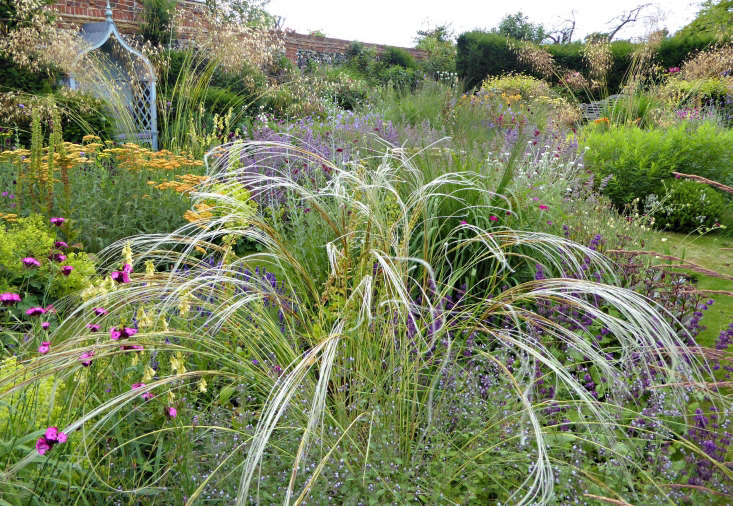 The formal garden is split into four roughly symmetrical beds and is very much influenced by the new perennial movement, as well as by Beth Chatto (whose nearby nursery at Elmstead has provided lots of plant inspiration).