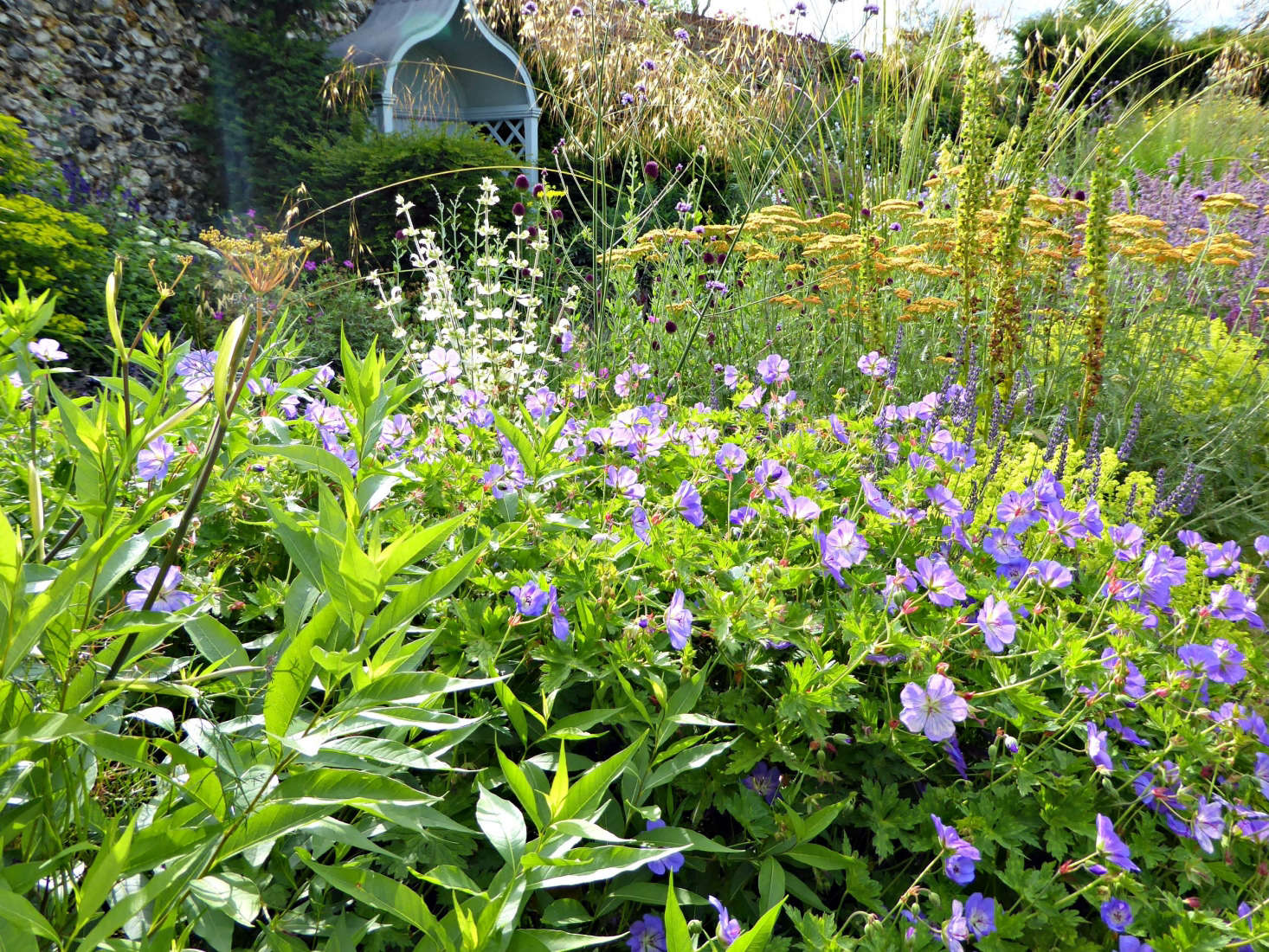 Tall spires and airy grasses contrast with good moun- forming perennials such as Geranium &#8