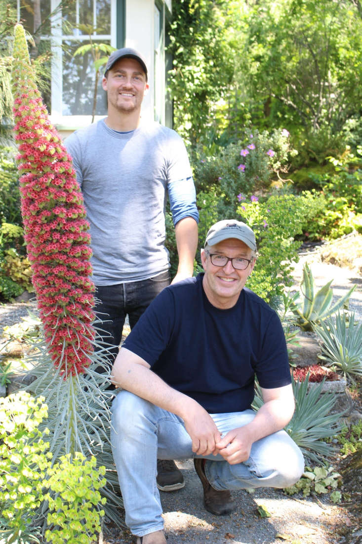 Steve Ansell (at left) helps Smyth in the garden one day a week. Smyth pictured here with Echium wildpretti.