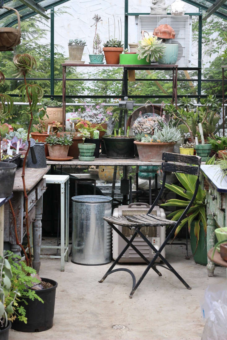 Smyth&#8\2\17;s greenhouse serves as a propagation house and a dry storage area for succulents.