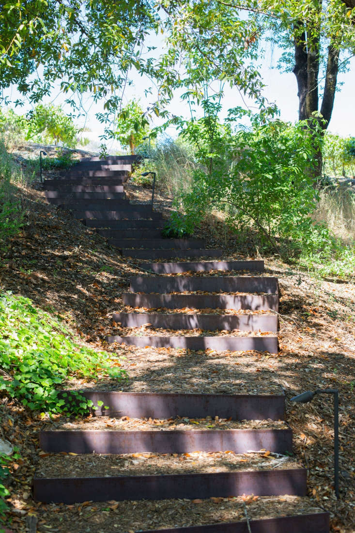The stairway has Cor-ten steel risers. &#8\2\20;They were really easy to install,&#8\2\2\1; says Stickley. &#8\2\20;The riser face you see as you walk up has ends that return into the hillside. The U-shape is very easily filled with gravel and then mulched to create a safe surface to walk on that doesn&#8\2\17;t erode the slope.&#8\2\2\1;