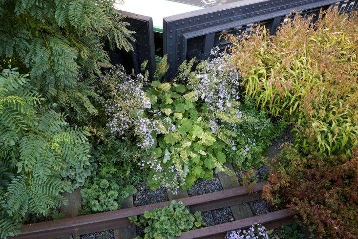 Railroad tracks and steel railings surround drifts of Heart-leaved aster and Dale&#8\2\17;s alumroot in September on the Northern Spur of the High Line.