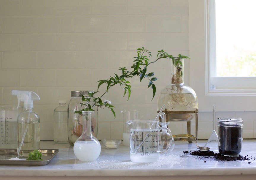 Whether you want to save money or be more environmentally friendly (or just love being crafty), you can avoid harsh chemicals by usinghomemade remedies to fertilize, cureplant ailments, and improvesoil. See our favorites inHomemade Remedies: 5 Natural Garden Helpers. Photograph by Mimi Giboin.