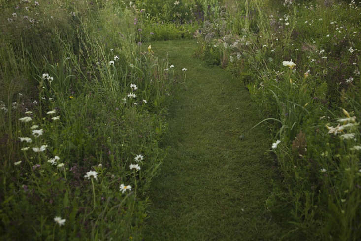 Elegance segues into something more pastoral, with paths mowed through daisies.