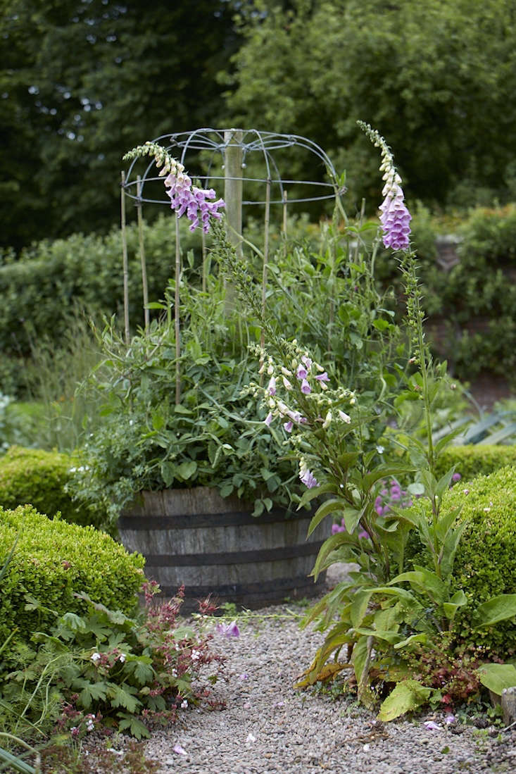 Foxgloves and flowers in a barrel planter are friendly to pollinators.