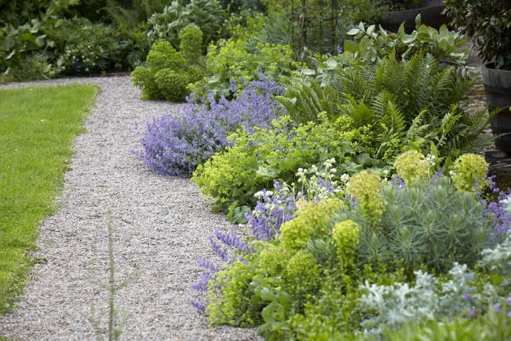 A gravel path&#8\2\17;s edge is softened by planting that spill over into the walkway: ferns, euphorbia, and alchemilla. Photograph by Britt Willoughby Dyer. For more of this landscape, see Old-Lands: A Modern Welsh Garden, from a Bygone Age.
