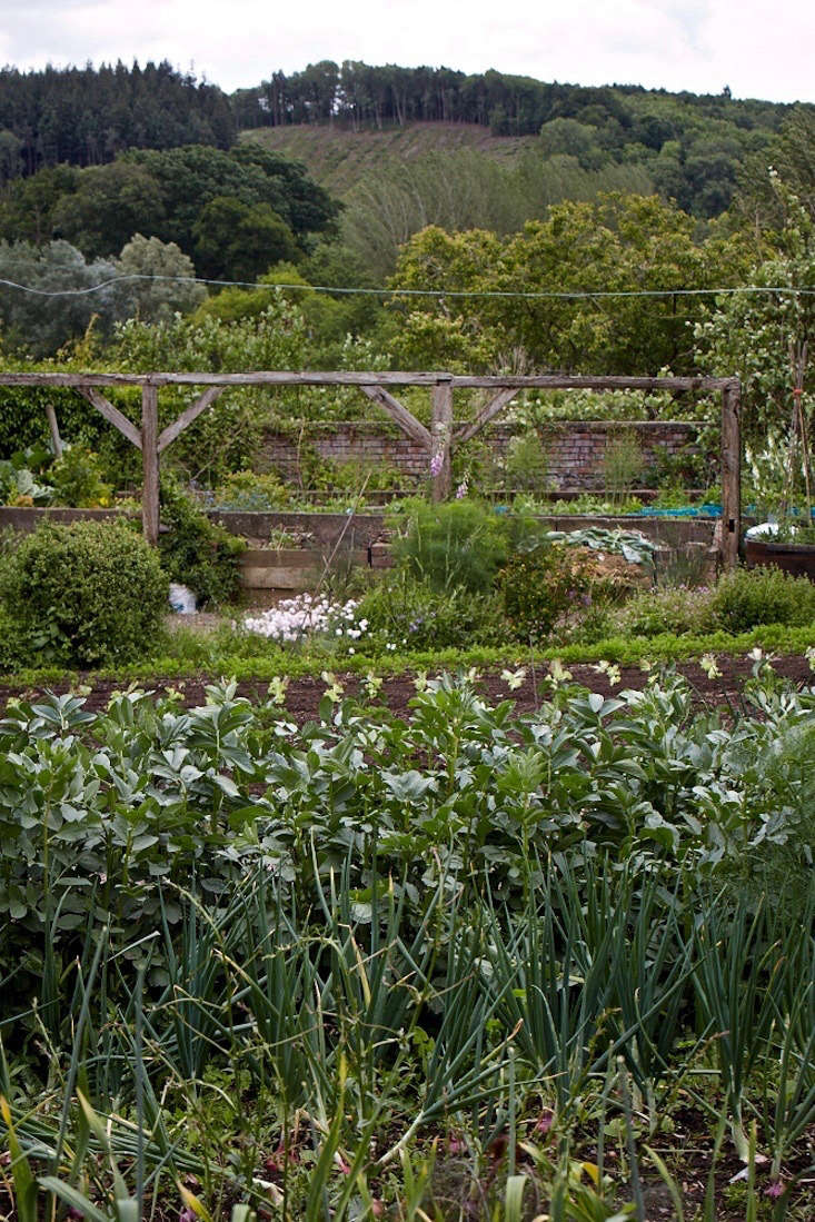 Other than the allure of an old walled garden, Colum and his wife, Cathi, who runs a forest school on the estate, were drawn to the traditional way of life here.