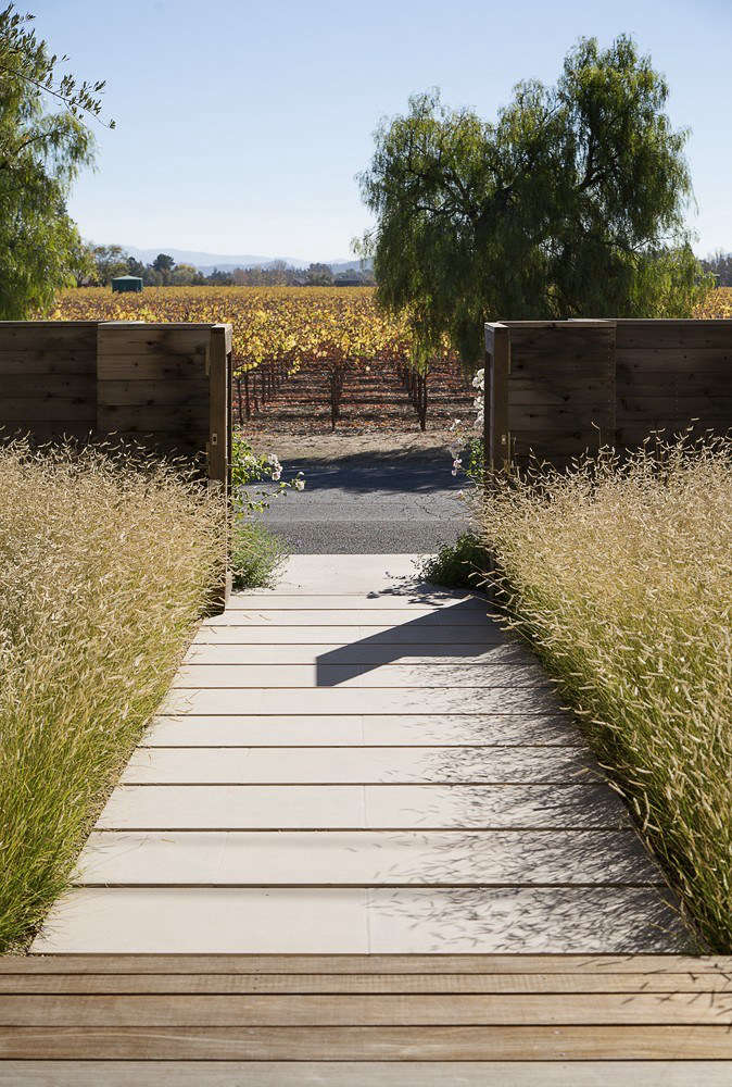 Bouteloua gracilis as a lawn replacement. Photograph by Matthew Millman courtesy Scott Lewis Landscape Architecture. For more of this project, see Vineyard Haven: A Napa Valley Garden That Belongs to the Land.