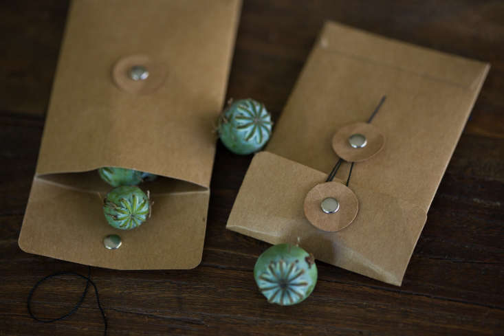 A set of \25 brown Kraft Paper Seed Envelopes with cord clasps, big enough to hold large poppy pods, is \$7.\24 from Goldberg Gartenschatz via Etsy.