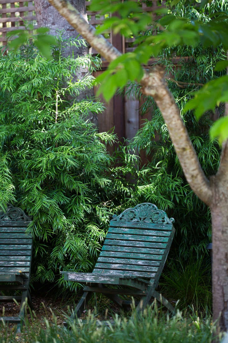 Two wooden folding chairs Greg had made while living in Indonesia sit in a shady spot in a back corner of the garden, the former site of the treehouse.