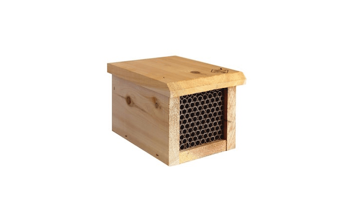 From Welliver Outdoors, a Welliver Outdoors Standard Mason Bee House comes with paper tubes sized for mason bees; \$\199.99 from Amazon.