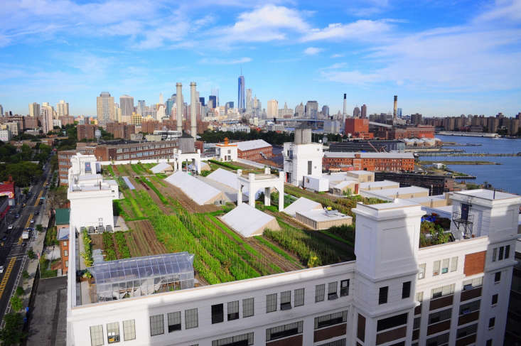 &#8\2\20;We use ten-thousand-year-old technology on brand new green roof systems,&#8\2\2\1; says Cole Plakias. &#8\2\20;We are doing it the way it has been done since the beginning of time.&#8\2\2\1; Simultaneously, she says, the team is always looking at techniques and metrics like water usage, to identify any room for improvement when it comes to waste.
