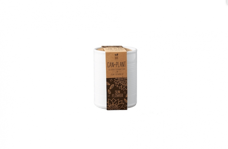 A Ceramic Can Grow Kit shaped like an old-fashioned tin can comes with basil, mint, sunflower, or wild strawberry seeds and is $ from Terrain.