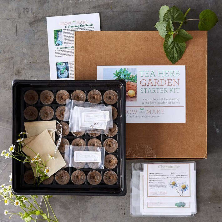 A Tea Herbs Garden Kit comes with a grow tray, eight packets of seeds (including anise hyssop, ashwagandha, chamomile, echinacea, horehound, lemon balm, peppermint, and tulsi), 36 peat pellets to use as a growing medium, and is $39.95 from Williams-Sonoma.
