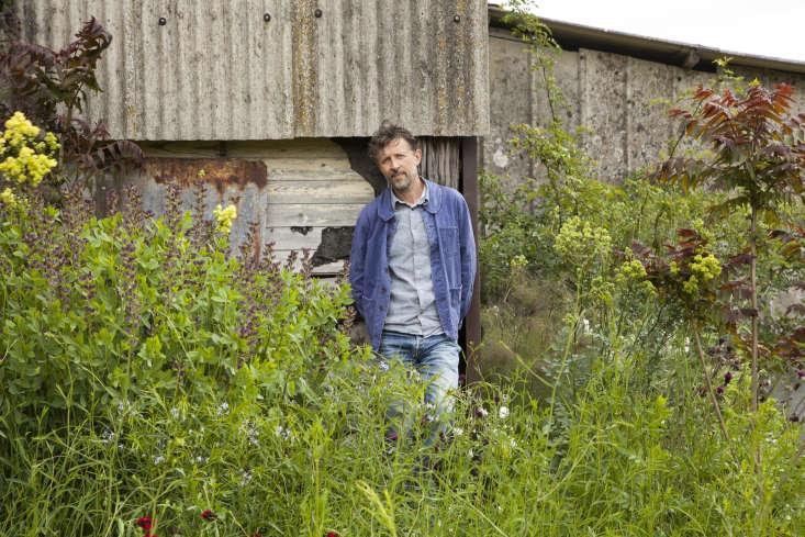 Dan Pearson in his Somerset garden.