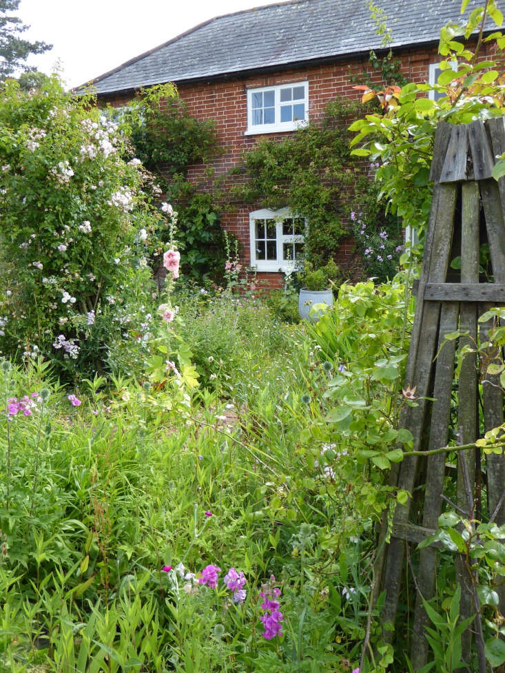 Use rustic obelisks to encourage a mix of climbers to intermingle.