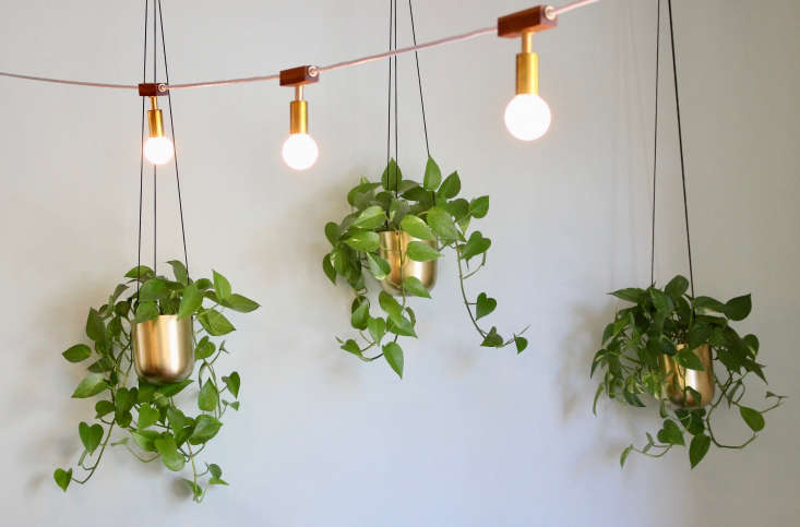 String lights from Hamster conjure a garden patio vibe indoors.