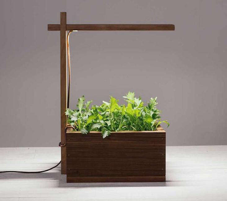Powered by LED light, aGrow Real Light Box comes with a reusable wooden box and &#8
