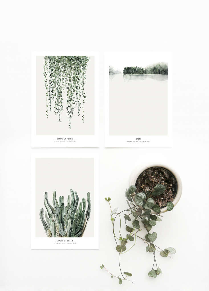 A set of three Botanics Postcards for mailing and/or hanging is € ($.8