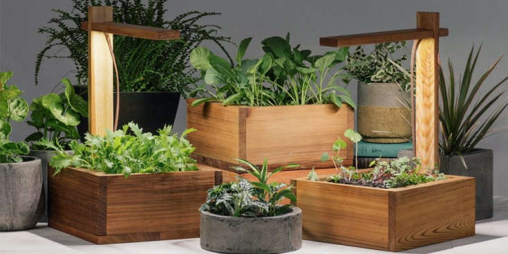 The grow light comes with organic potting mix. Take the lid off the box and use it as a tray after planting.